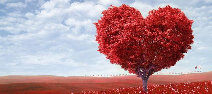 Felicitaciones de Amor -