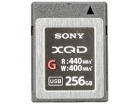 XQD G MEMORY CARD G 256GB